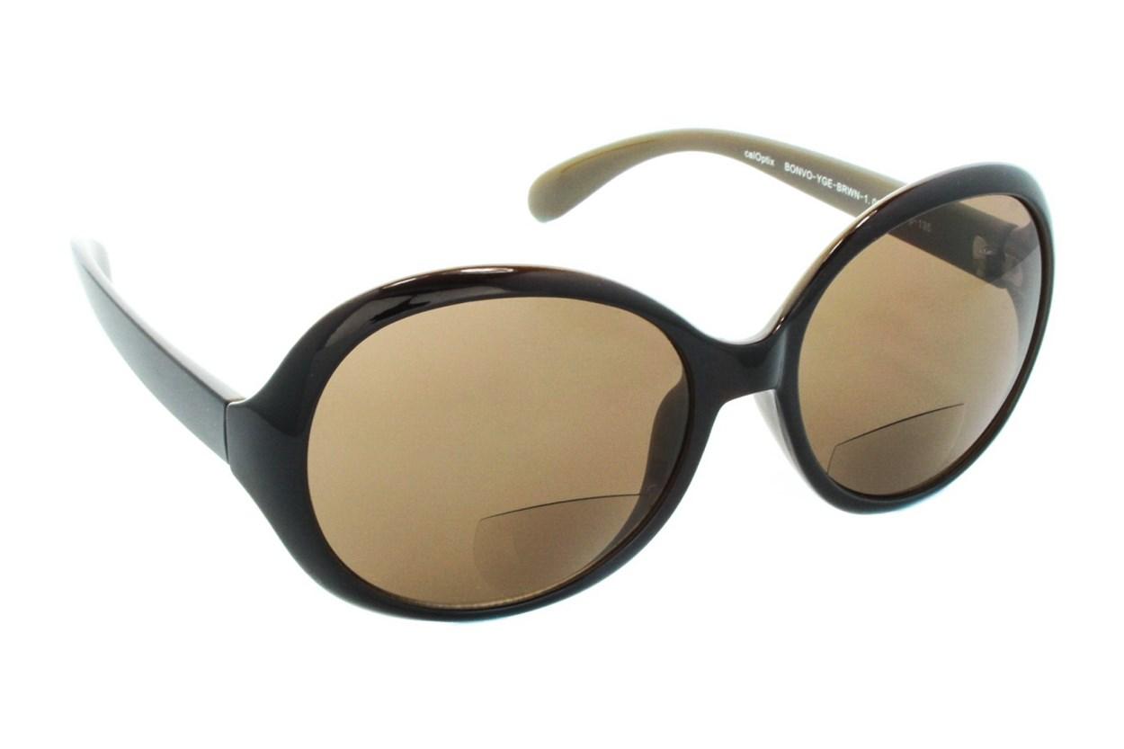 CalOptix Bon Voyage Reading Sunglasses ReadingGlasses - Brown